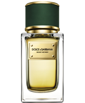 Velvet Vetiver Dolce and Gabbana